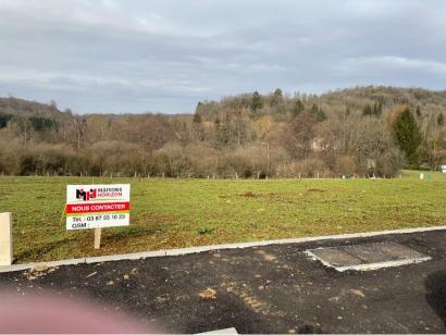 Terrain à vendre  à  Sexey-aux-Forges (54550)  - 75000 € * : photo 1