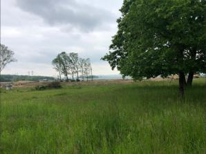 Terrain à vendre à Luttange (57935)<span class='prix'> 154000 €</span> 154000