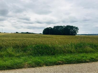 Terrain à vendre  à  Allondrelle-la-Malmaison (54260)  - 74000 € * : photo 1