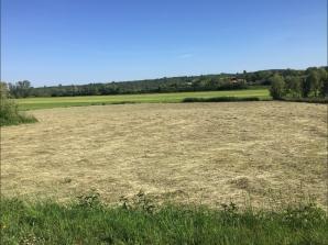 Terrain à vendre à Adaincourt (57580)<span class='prix'> 58000 €</span> 58000