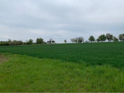 Terrain à vendre  à  Waldwisse (57480)  - 64350 € * : photo 3