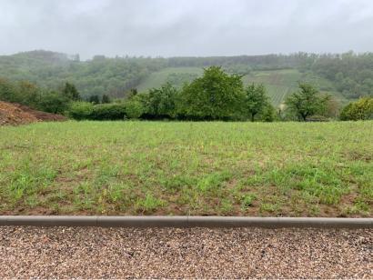 Terrain à vendre  à  Contz-les-Bains (57480)  - 148300 € * : photo 1