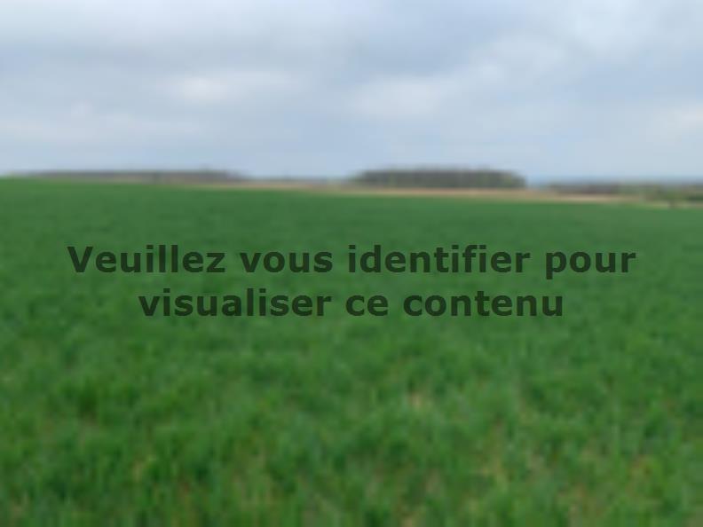 Terrain à vendre Waldwisse69900 € * : vignette 2