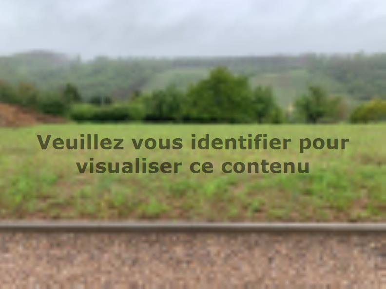 Maison neuve Contz-les-Bains 299000 € * : vignette 1
