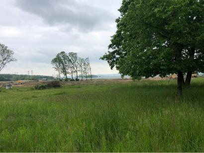 Terrain à vendre  à  Pagny-sur-Moselle (54530)  - 70000 € * : photo 1