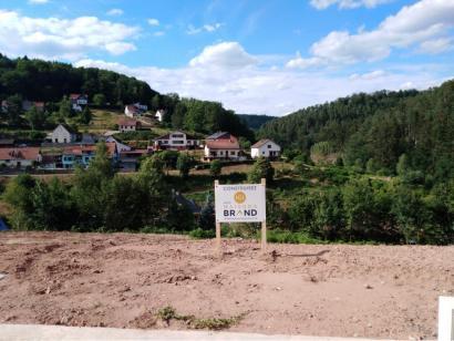 Terrain à vendre  à  Wingen-sur-Moder (67290)  - 42850 € * : photo 1