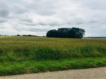 Terrain à vendre  à  Mont-Bonvillers (54111)  - 59000 € * : photo 1