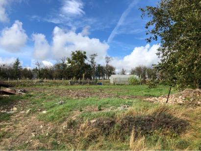 Terrain à vendre  à  Schwerdorff (57320)  - 56000 € * : photo 1