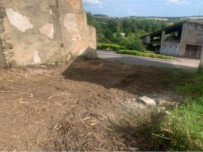 Terrain à vendre  à  Schwerdorff (57320)  - 29000 € * : photo 3